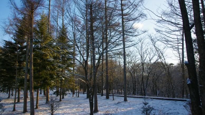 2010.12.29 追分の山の風情のある空